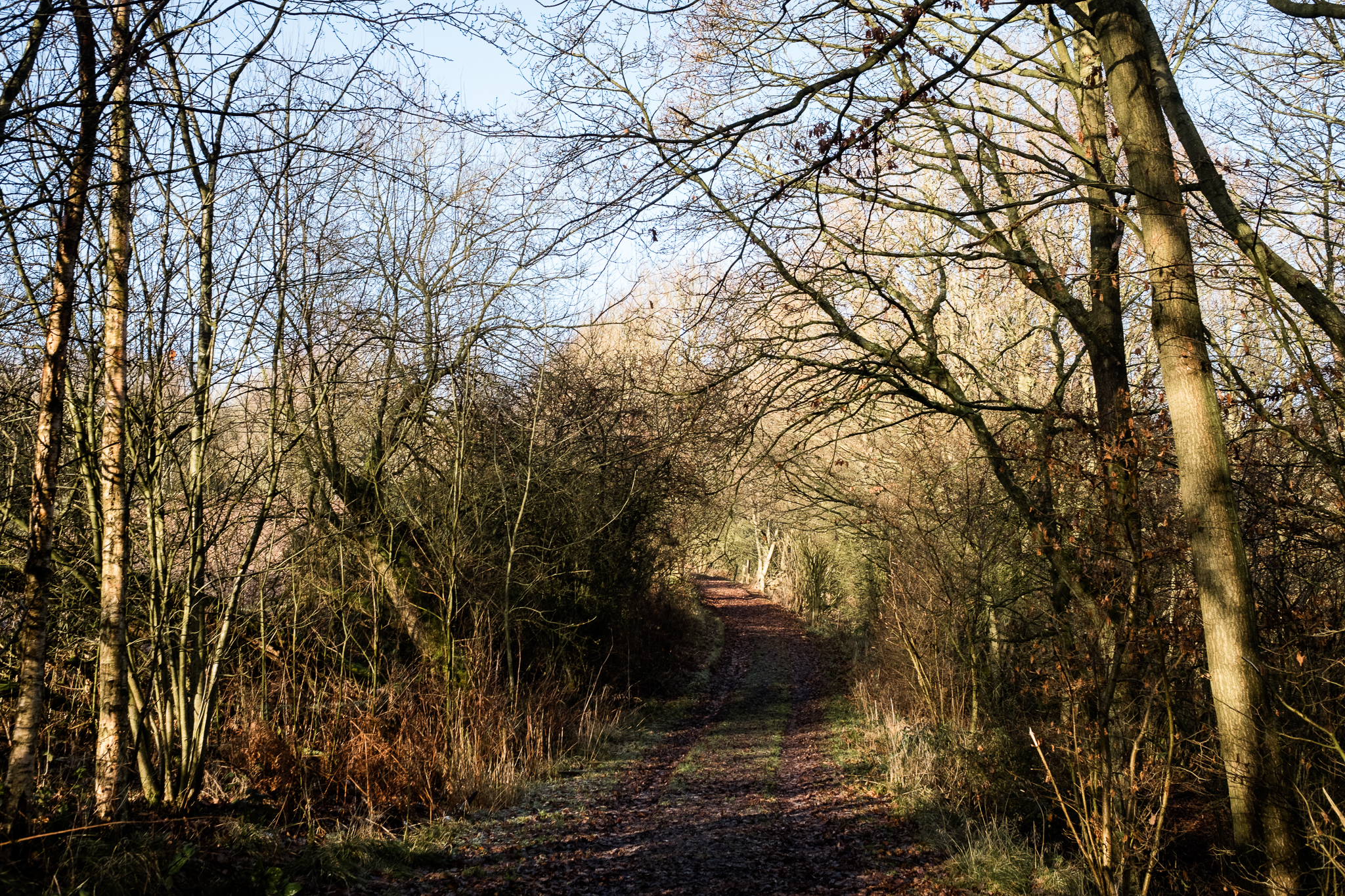 Staffordshire Photowalk Consall Forge Consall Nature Reserve The Black Lion Winter Cold Frosty-18.jpg
