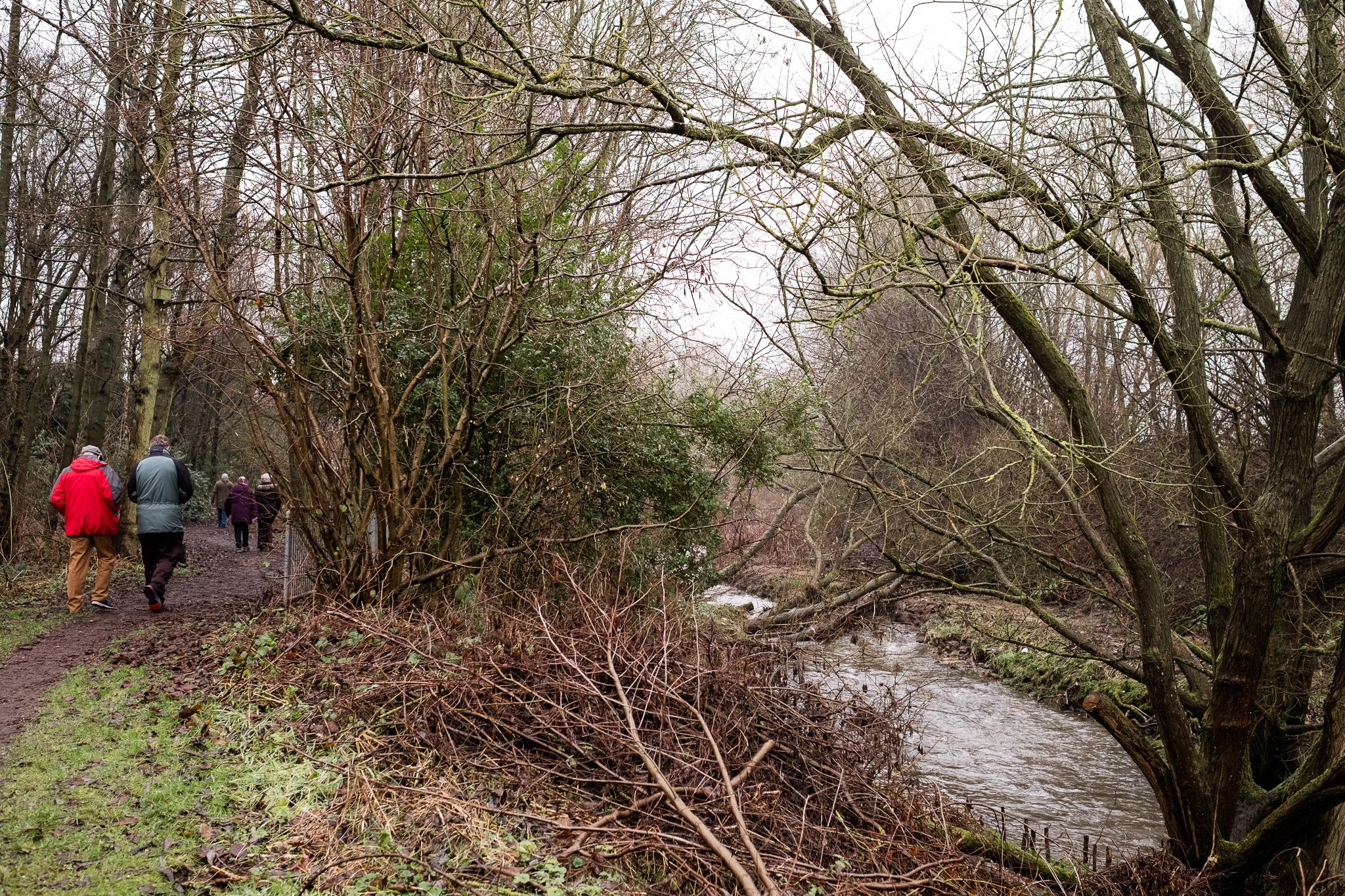 Closer to Home Walk Photowalk Joiner's Square, Hanley, Stoke-on-Trent, Staffordshire Winter Nature Reserve-6.jpg