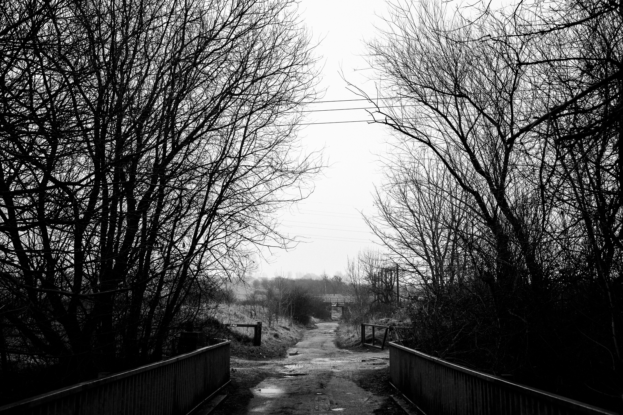 Closer to Home Walk Photowalk Joiner's Square, Hanley, Stoke-on-Trent, Staffordshire Winter Nature Reserve-8.jpg