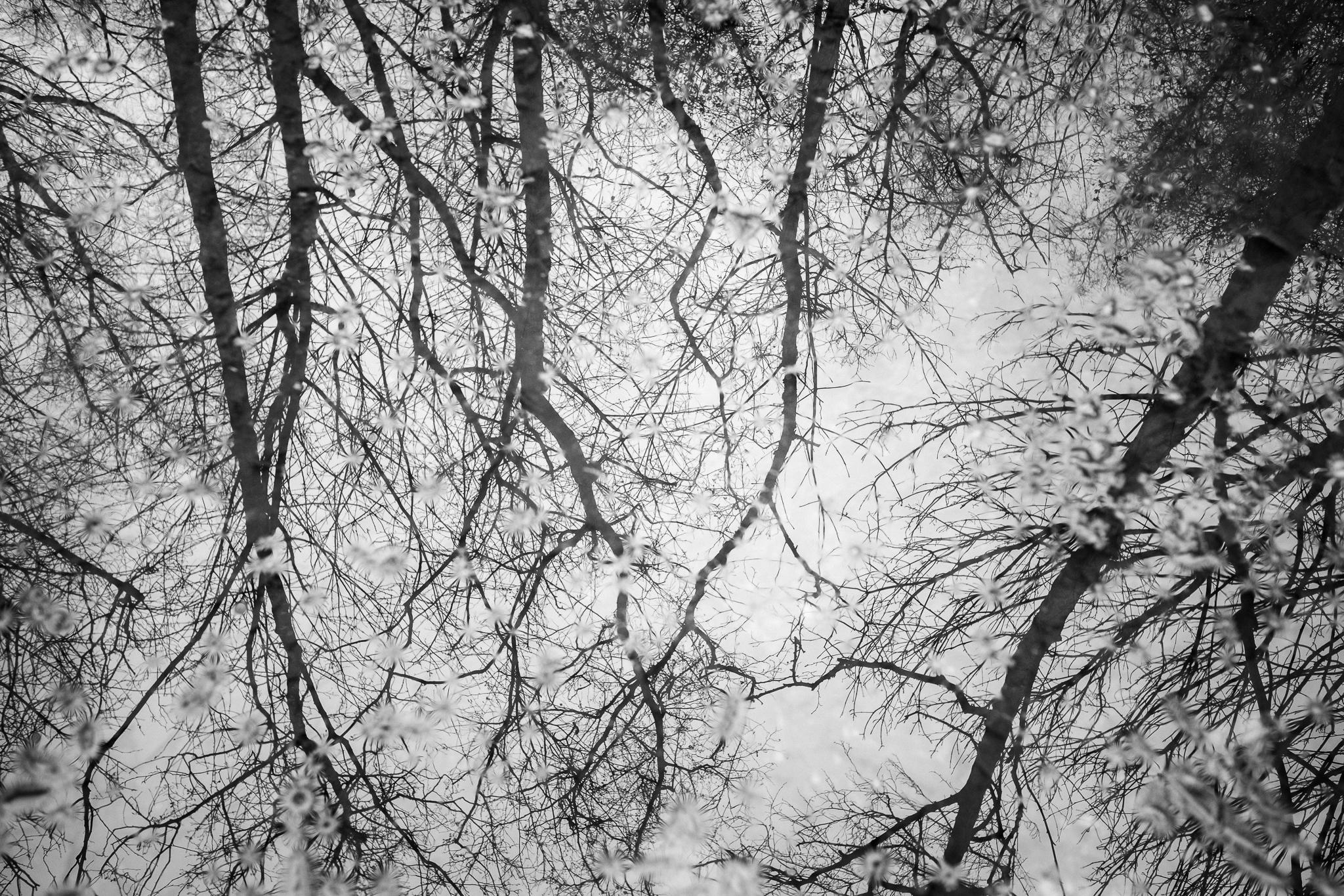 © JENNY HARPER