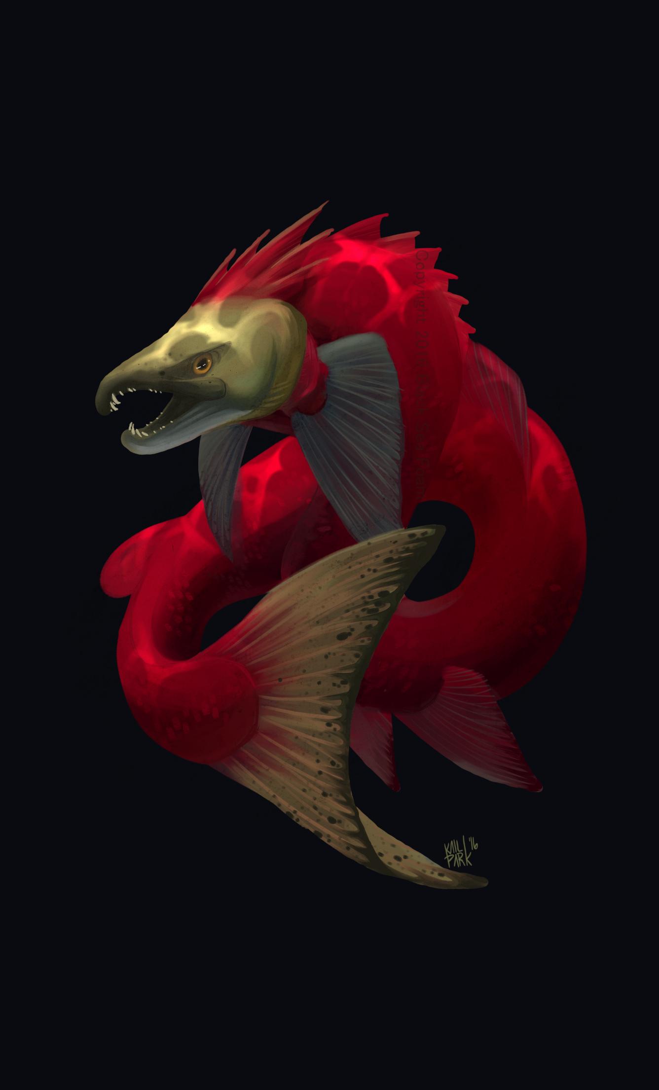 sockeye dragon web.jpg