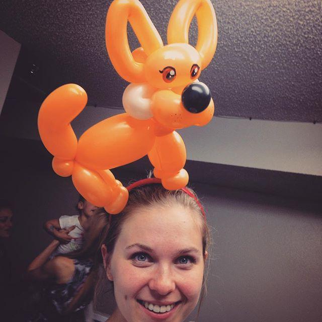 Welsh Corgi balloon headband! #niftyballoons #corgisofinstagram #balloonart