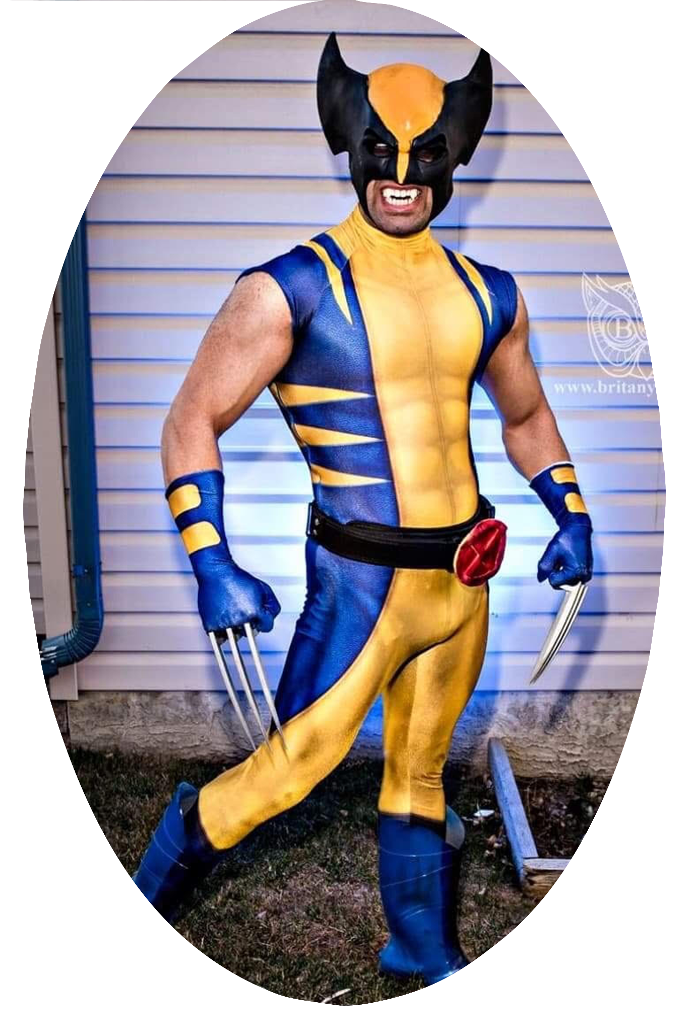 ppbm-sh-wolverine.png