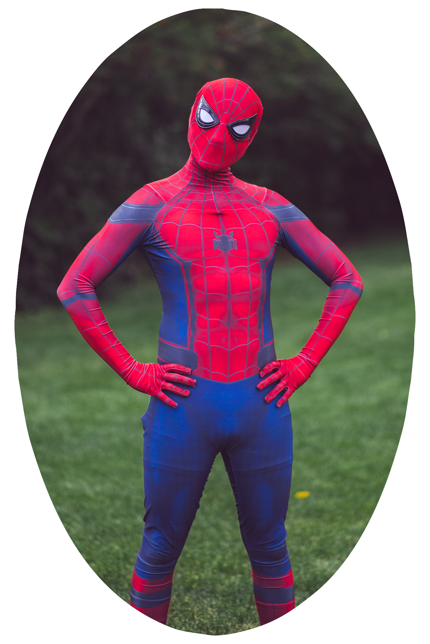 ppbm-sh-spiderman.png