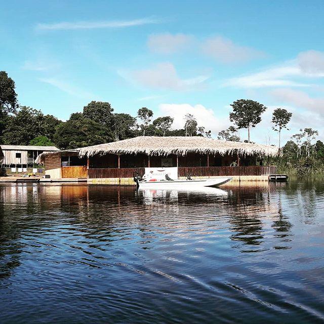 Amazon Prime Ecolodge.  Passeios ecológicos e pesca esportiva e uma grande vida selvagem esperam por você nesse paraíso no coração da Floresta Amazônica.  Contatos  info@amazonprimeecolodge.com WhatsApp (92) 99148 -0728  #amazon #amazonia #amazonas #hoteldeselva #jungletour #junglelodge #pescaesportiva #tucunaré