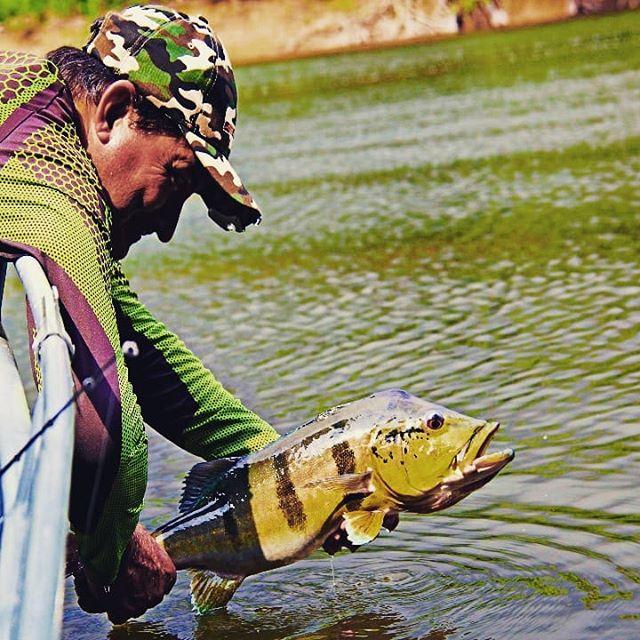 Amazon Prime Ecolodge  Conheça nossa promoção de pesca esportiva para Outubro 2019. Entre em contato e saiba mais. www.amazonprimeecolodge.com Info@amazonprimeecolodge.com WhatsApp (92) 99148 - 0728  #amazonprimeecolodge #amazon #amazonia #peacockbassfishing #passeiosecologicos #passeios #pescaria #hoteldeselva #jungletour #ecotours #hoteldeselva #tucunaré