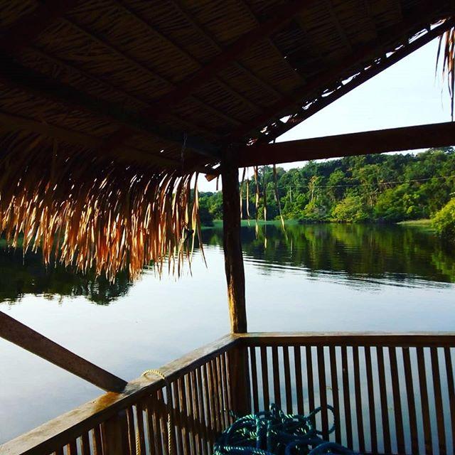 Amazon Prime Ecolodge. Este é o o nosso quintal na floresta. Conheça nosso pacote de passeios ecológicos na Floresta Amazônica. Contatos. info@amazonprimeecolodge.com WhatsApp (92) 99148-0728  #amazon #peacockbassfishing #junglelodge #jungletour #natureza #nature #selvaamazonica