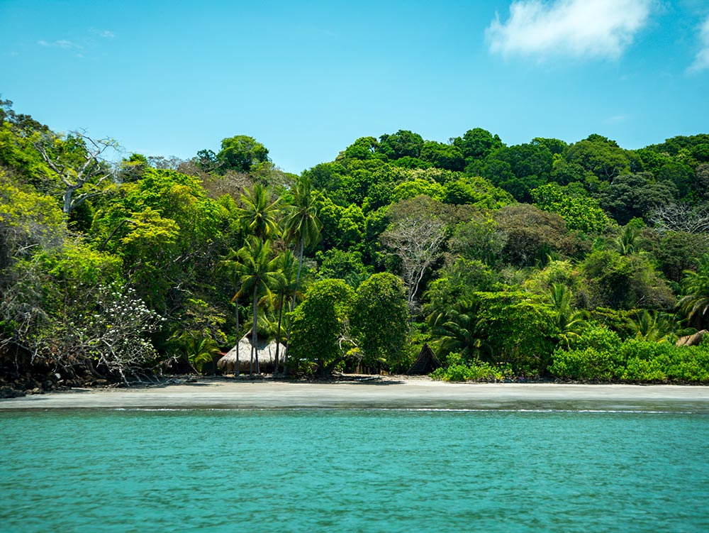 4.Isla Palenque-Here & Away.jpg