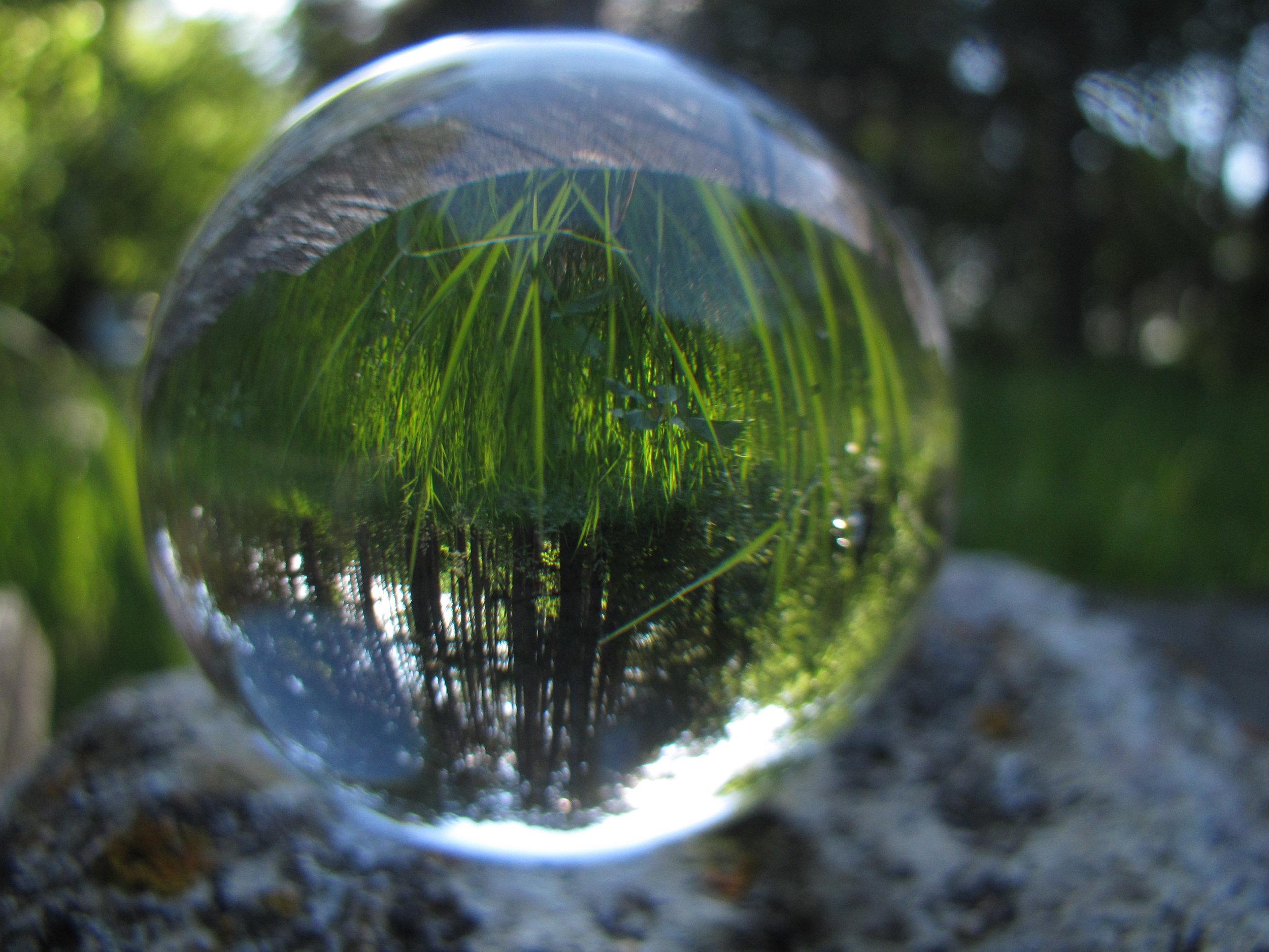 naturephoto