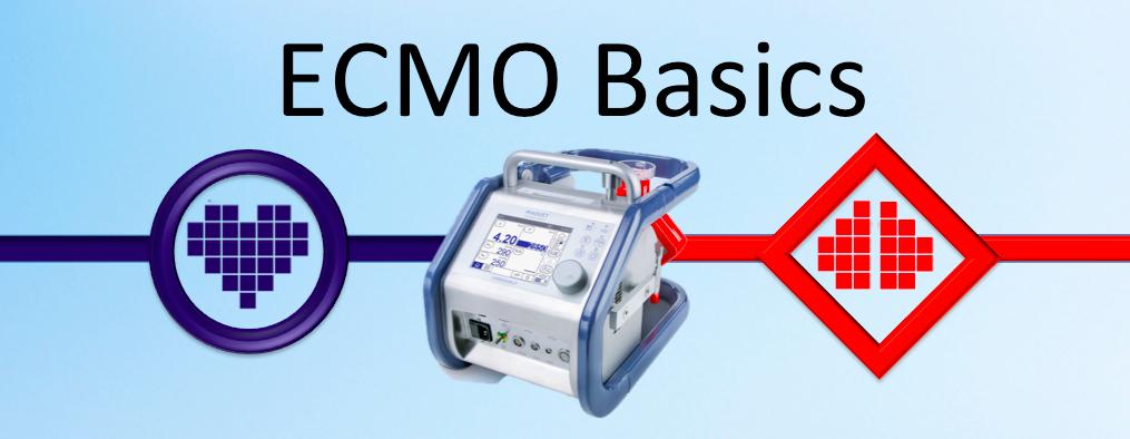 ACEM Basic.png