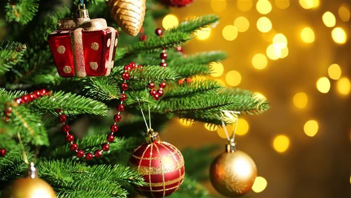 christmas-tree-.jpg