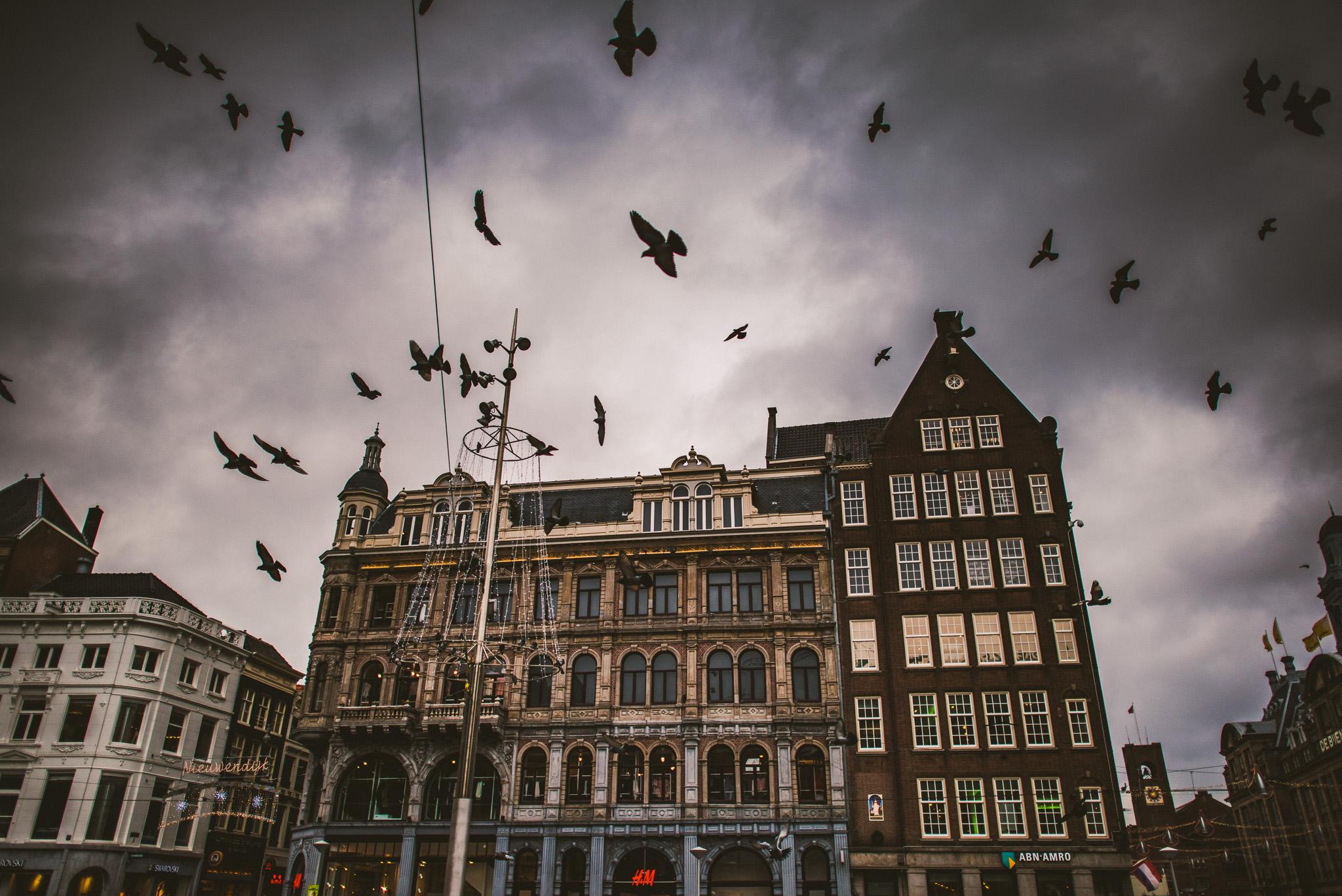 amsterdam-55.jpg