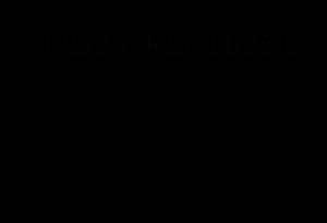 WEBSITE DESIGN,DEVELOPMENT & PHOTOGRAPHY BY  PUEO CREATIONS WEBSITE DESIGN & MARKETING