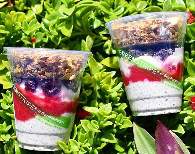 MAKA PARFAITS coconut chia pudding, raspberry sauce, macnut yogurt, black raspberries, and fresh granola #vegan #glutenfree