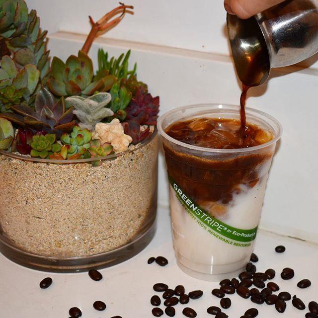 Organic Iced Latte