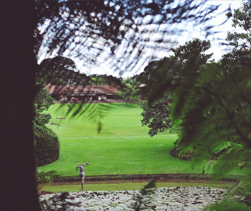 Makaranga Gardens.png