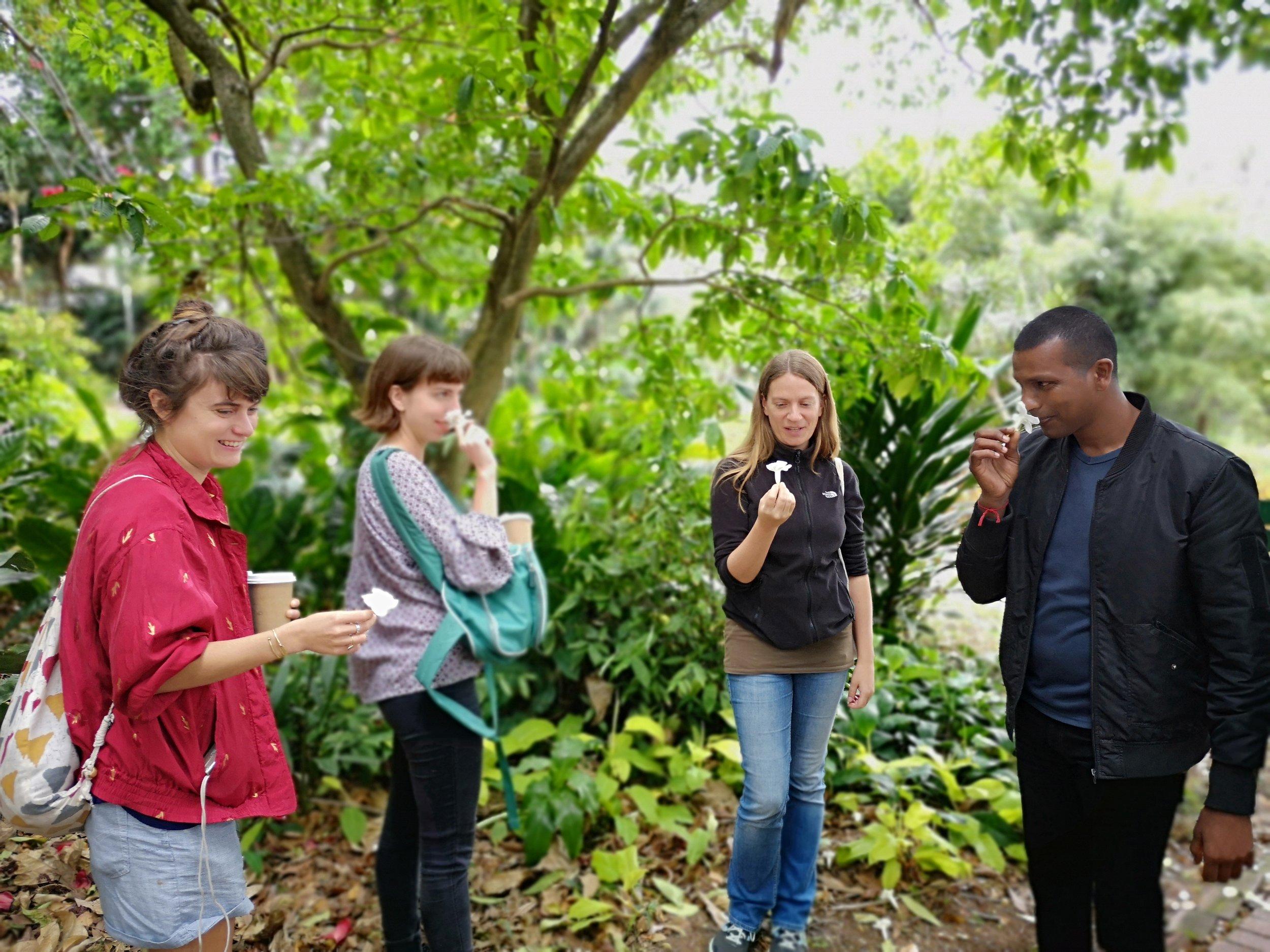 DBN Botanical Gardens 2 | Wild Routes.jpg