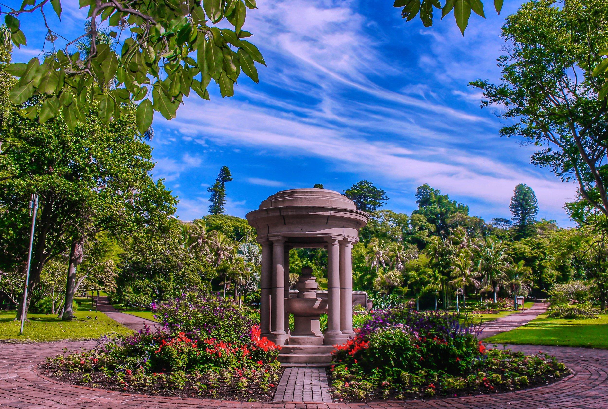 DBN Botanical Gardens 4 | Wild Routes.jpg
