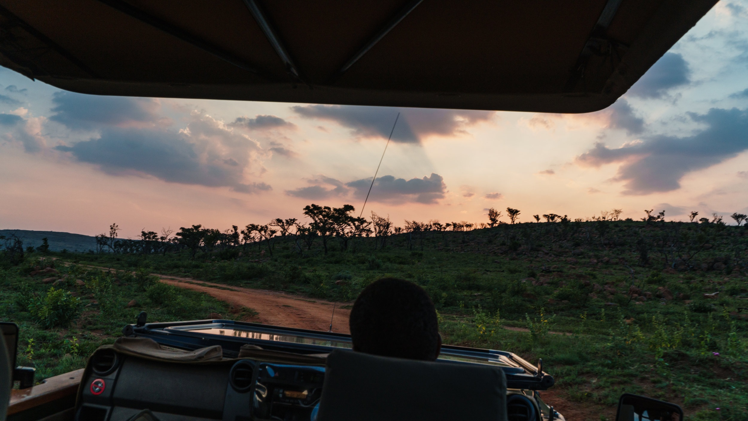 Game+Drive+Hluhluwe+Safari.jpg
