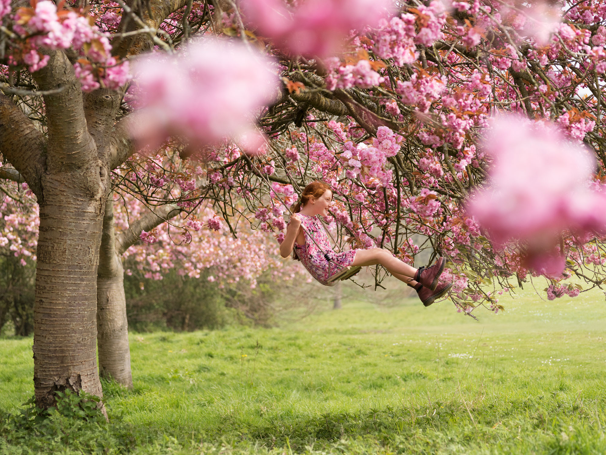 286_Cherry_Blossom_Joseph_Ford_39.jpg