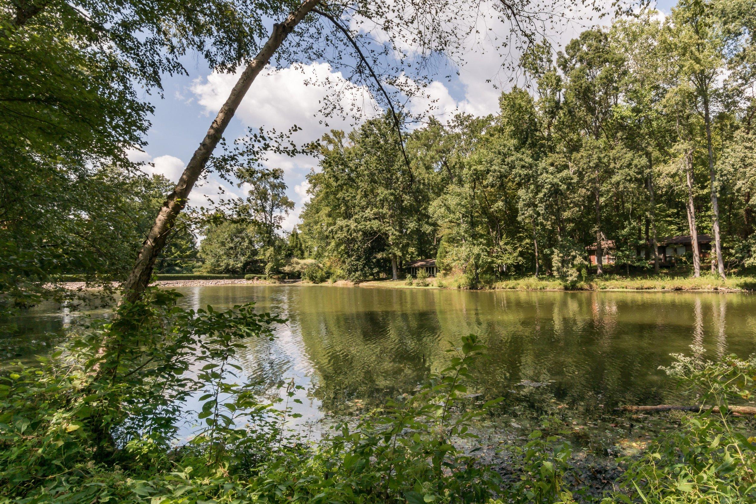 021_On The Pond.jpg