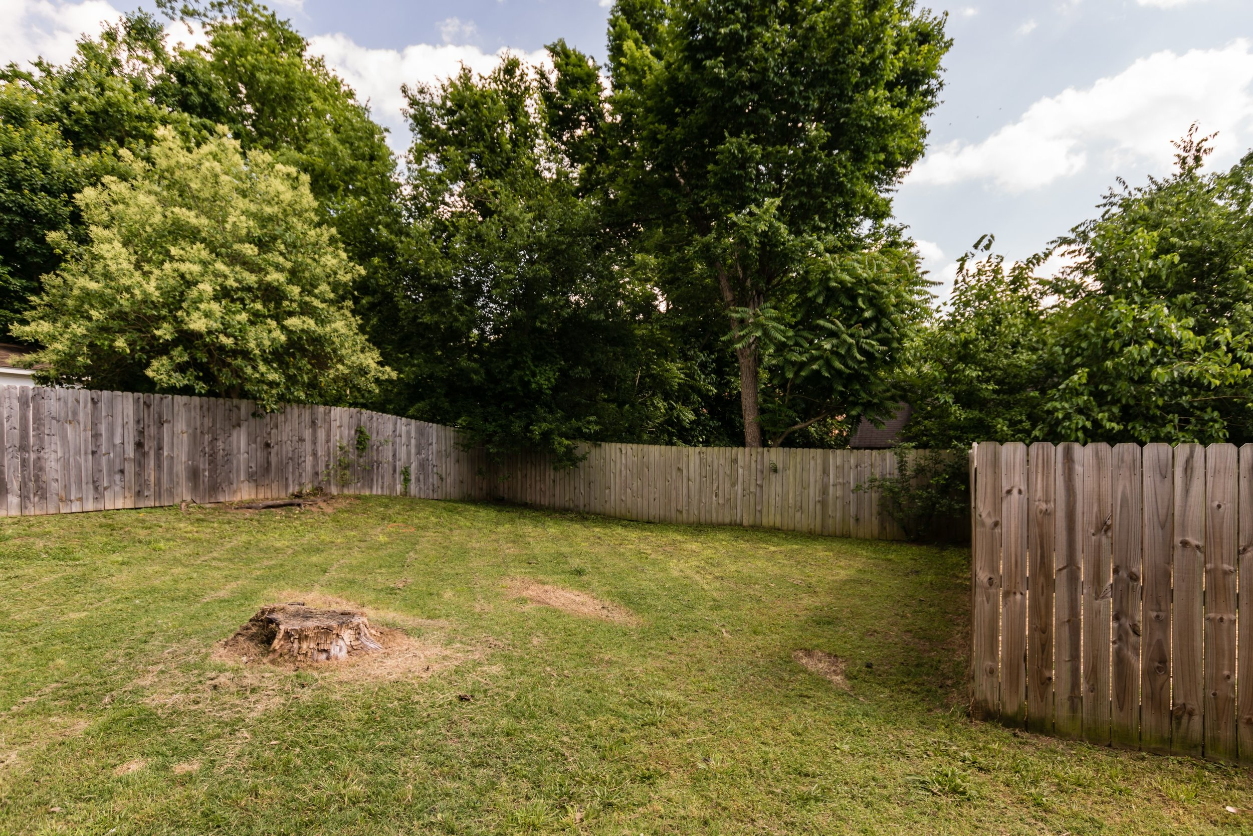 020_Fenced Backyard.jpg