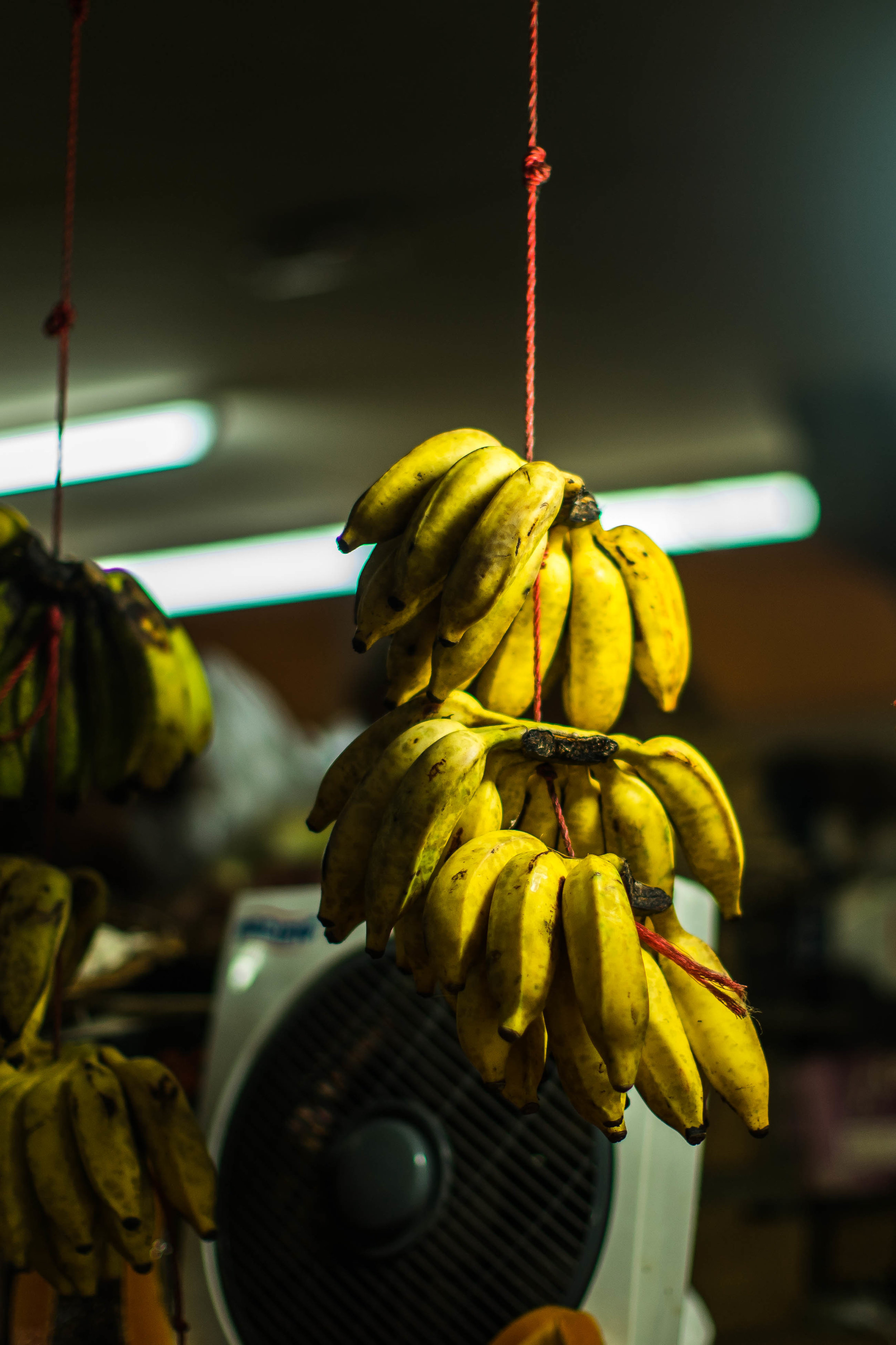 Port Louis Market-1.jpg