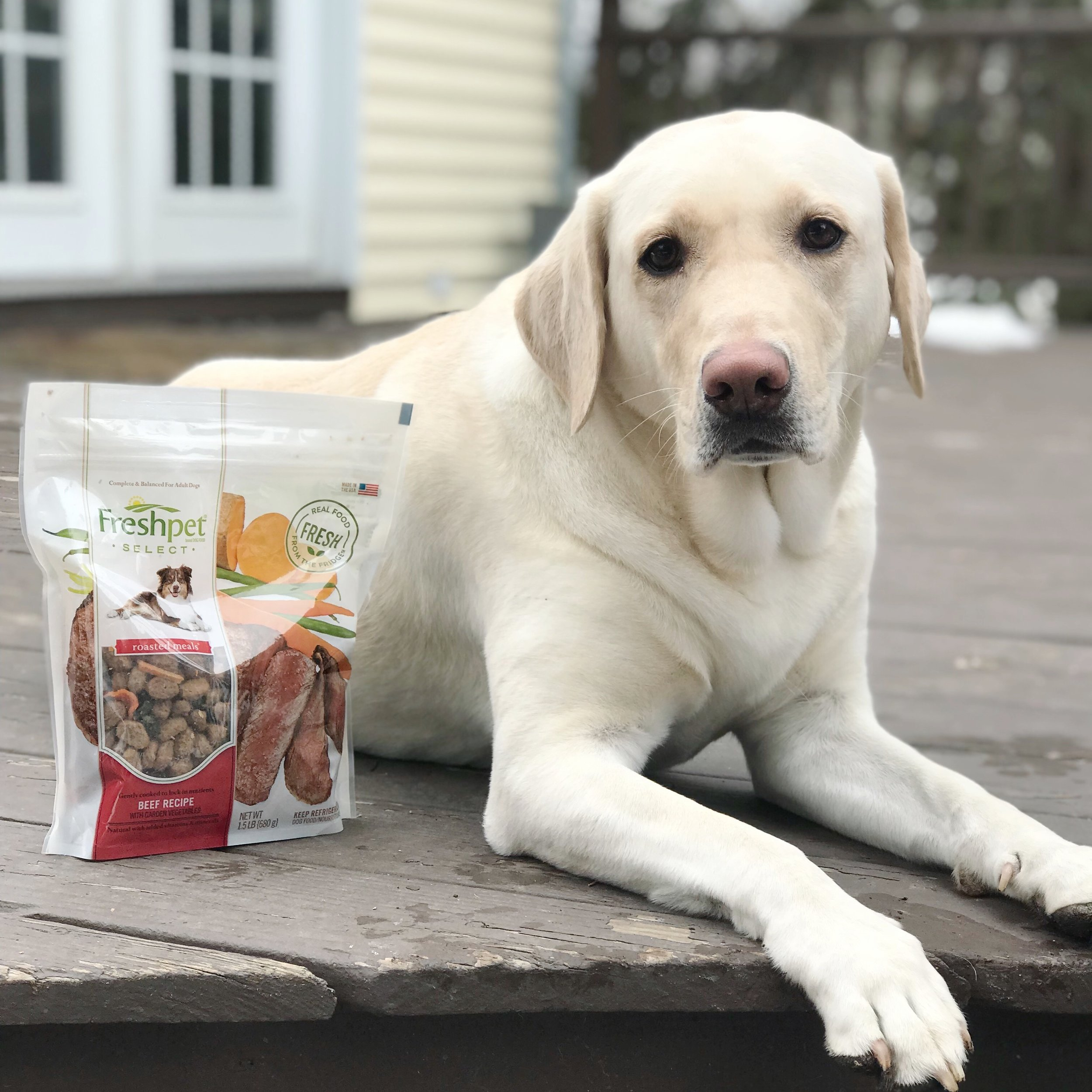 Thanks to Freshpet for sponsoring this post. Check out      Freshpet      refrigerated pet food, made in small batches with fresh ingredients and no artificial preservatives, for a difference you can see and your pet will feel.
