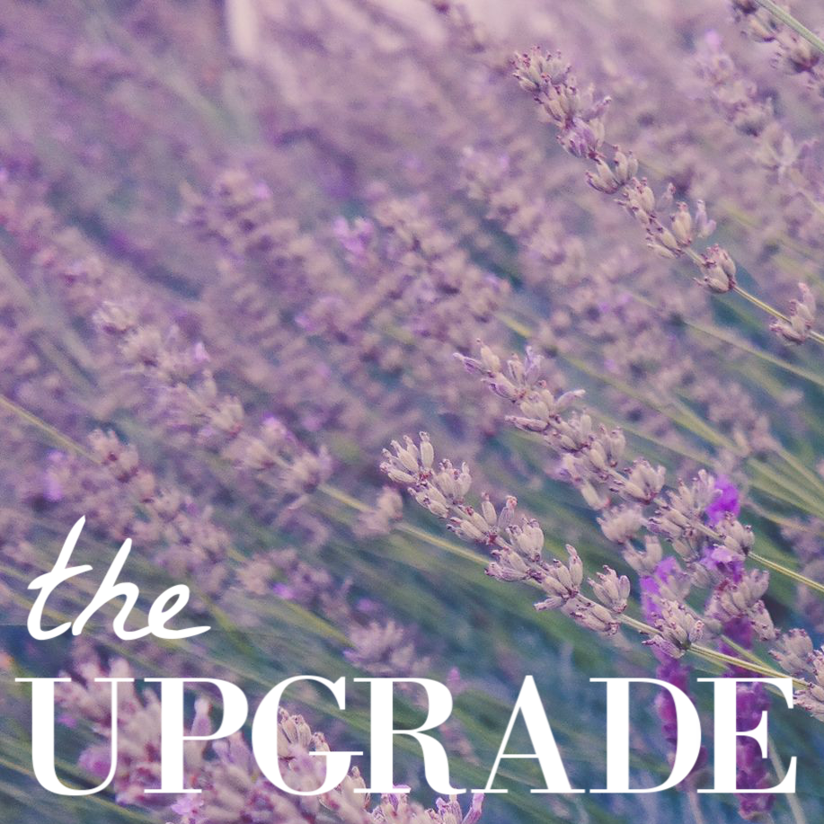 the upgrade (1).png