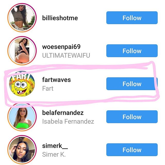 """When someone you love, who shall remain unnamed, says they """"only use Insta to follow hot chicks"""" and you notice a curious outlier.  I dare you --  @fartwaves."""
