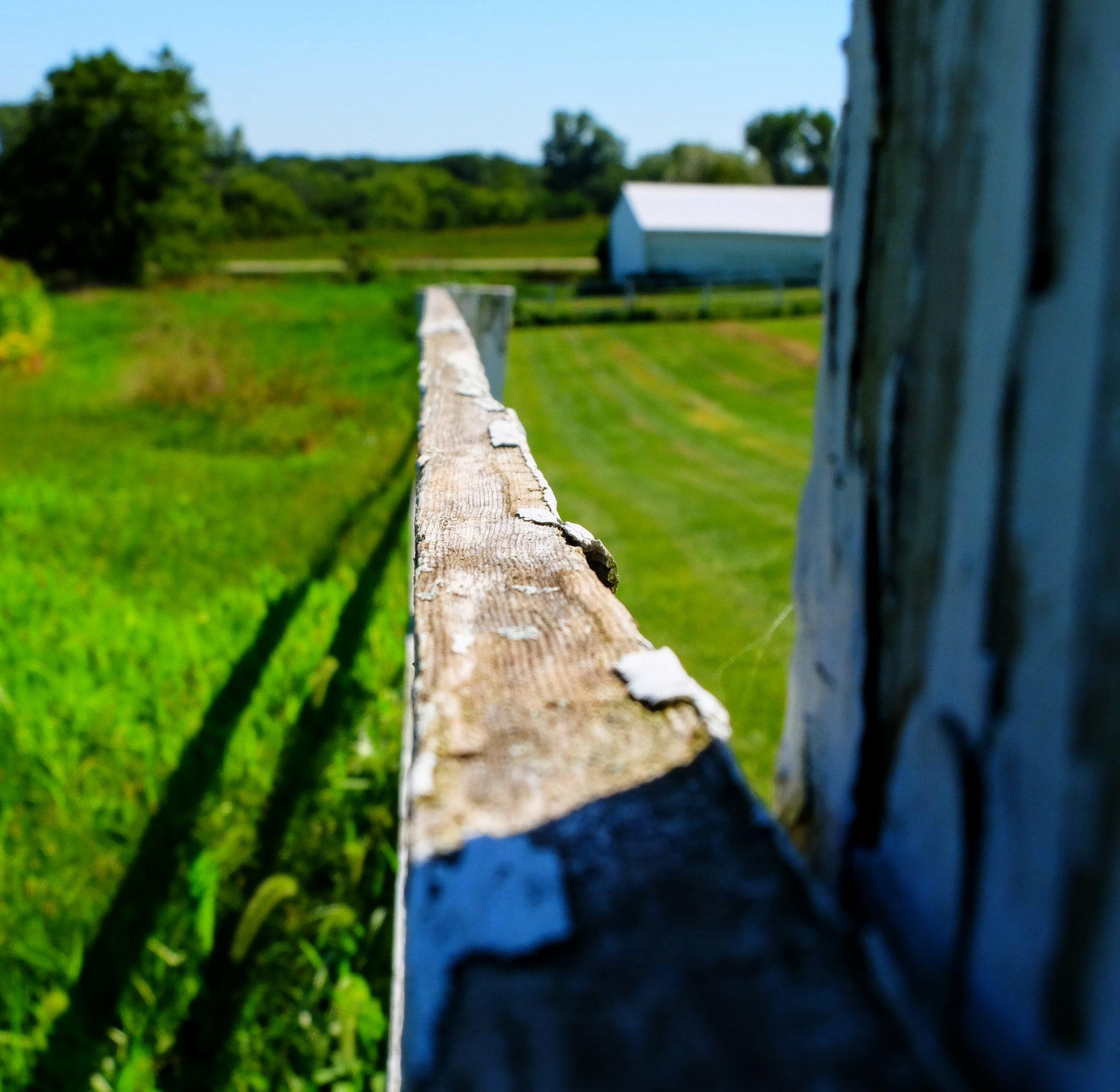 Farm Series -