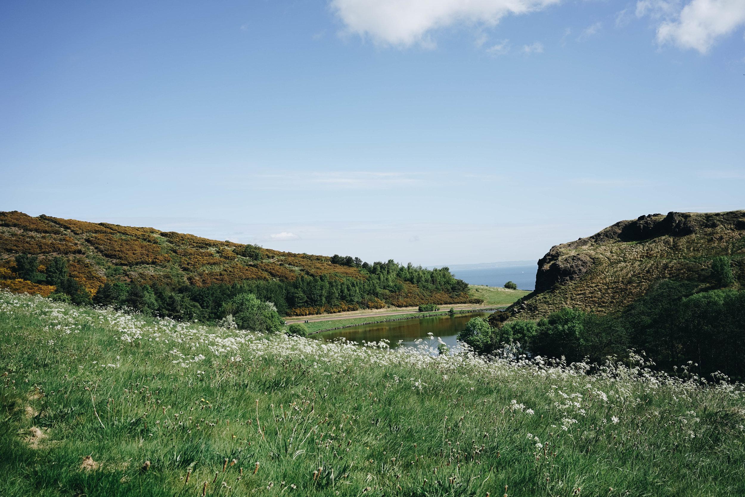 Scotland (5 of 6).jpg