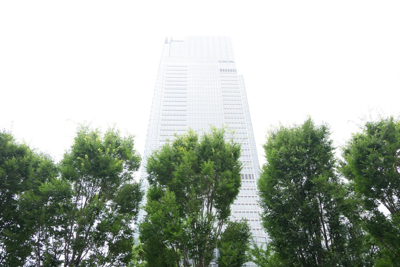 TokyoWhite-2.jpg