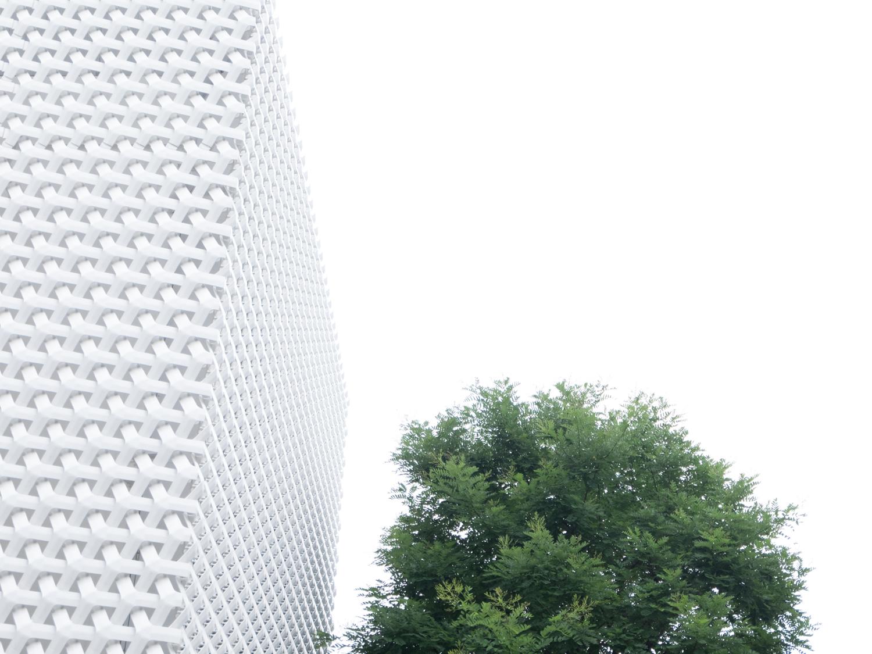 TokyoWhite-7.jpg