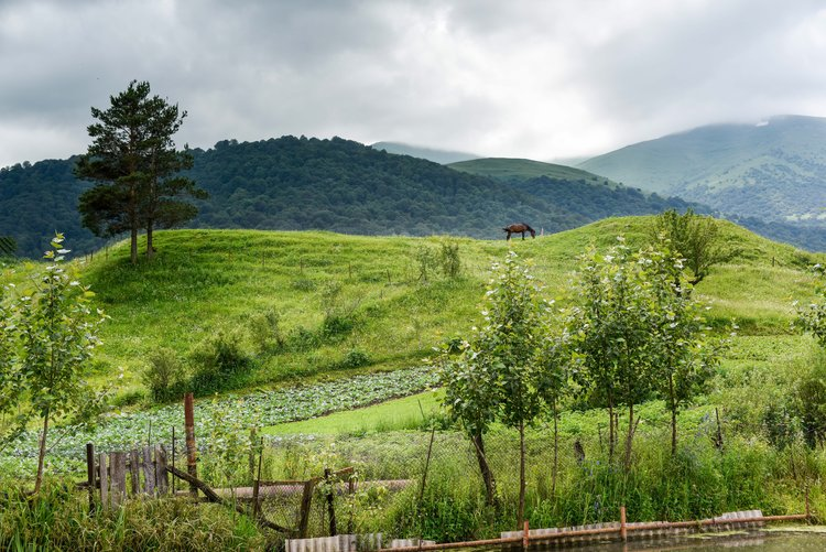 View from the Molokan village of Fioletovo