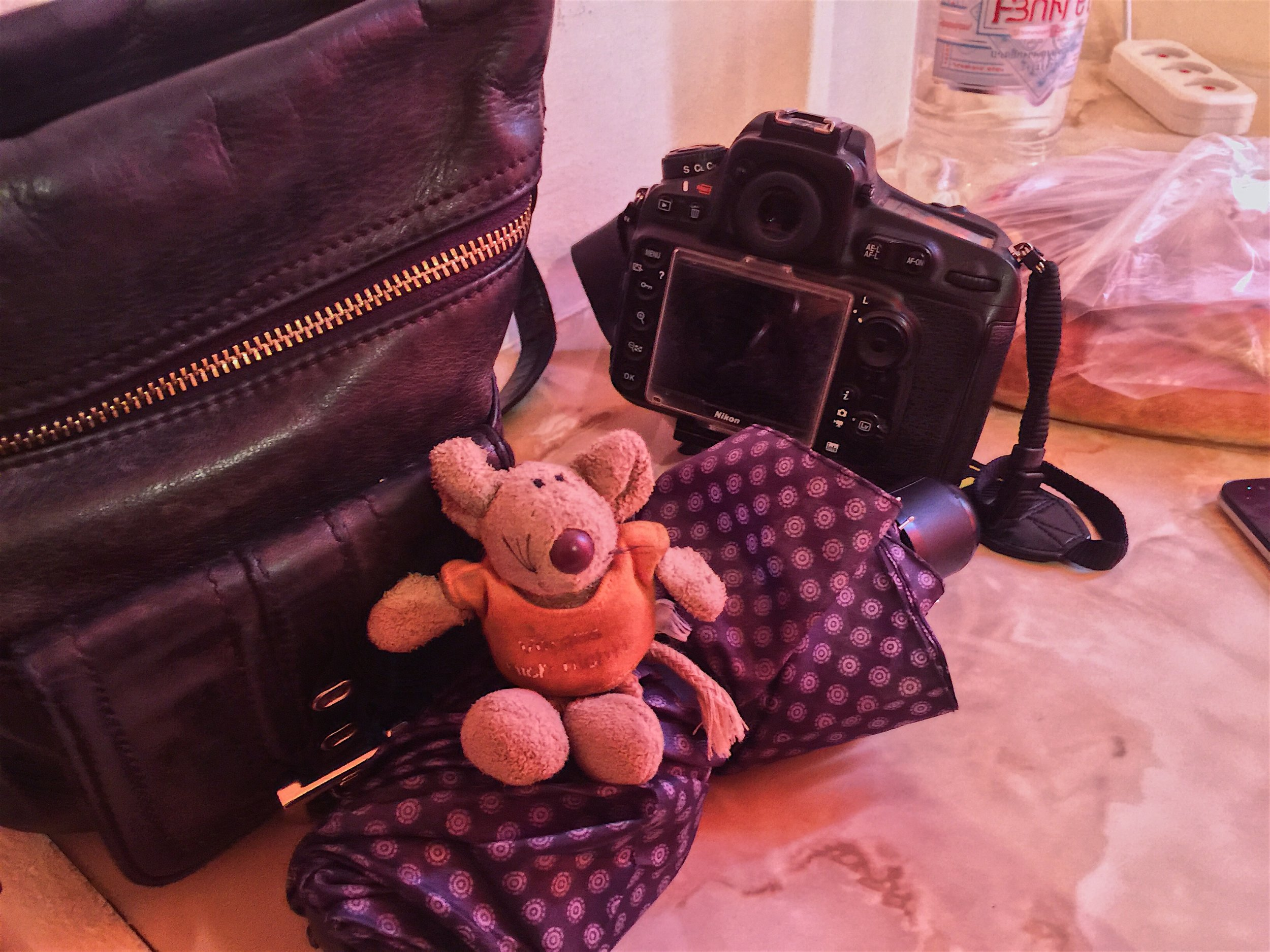 Mouse holds keys to Friendly B&B with Gyumri Flair