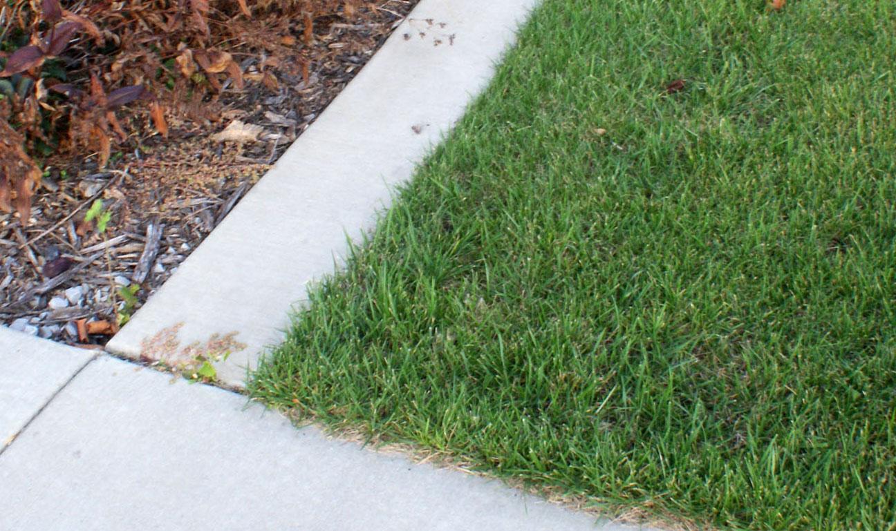 curb at monument crop.jpg