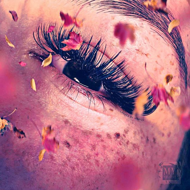 We want you to #fall in #love with #yourself!!! 🍂🍁 We want to know what makes you happy? #lashes make us #happy!!! Especially these @novalashusa #lashextensions done by #lashartist MariLu🍂🍁 Comment what makes you happy Below and #tagsomeone who needs a #lash boost!!! For your chance to win this #giveaway 🍂🍁 #free #volume #fullsetlashes
