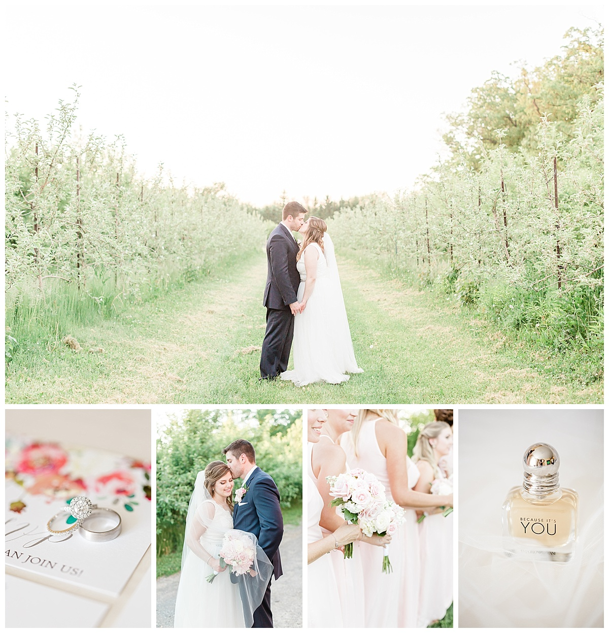 county-line-orchard-spring-wedding-chicago-photographer-light-airy.jpg