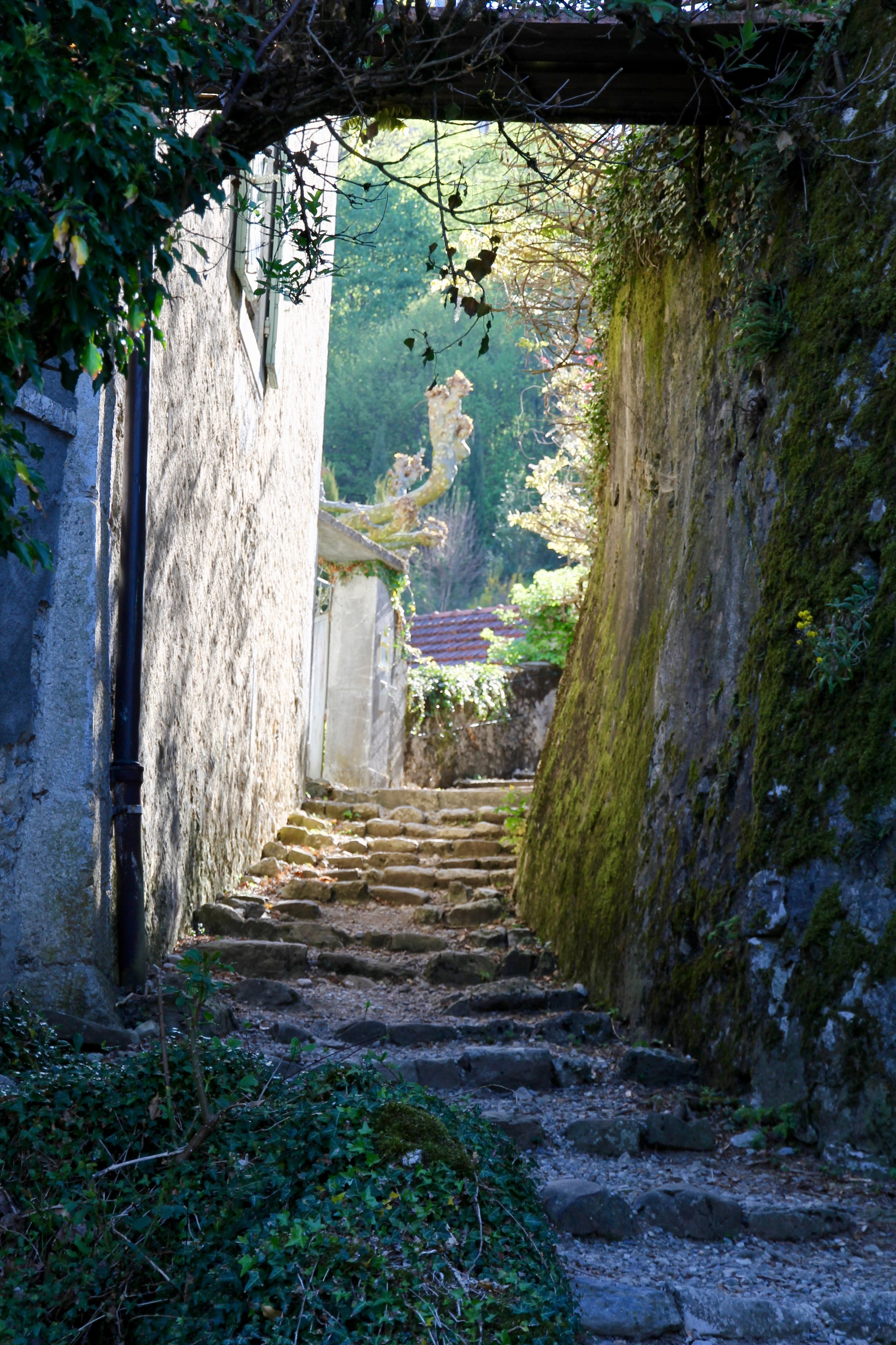 Path to the Chateau