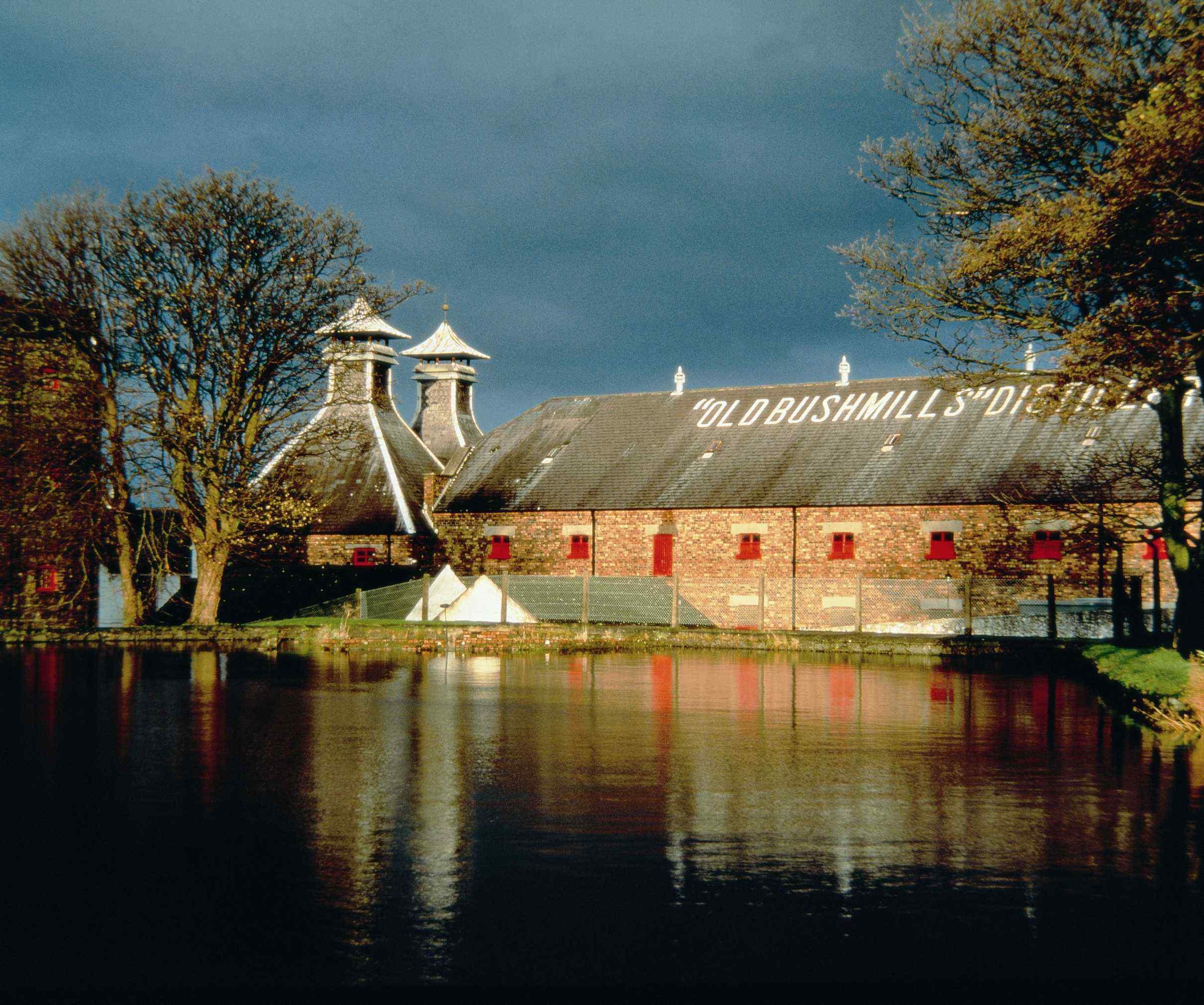 Old Bush Mills Distillery