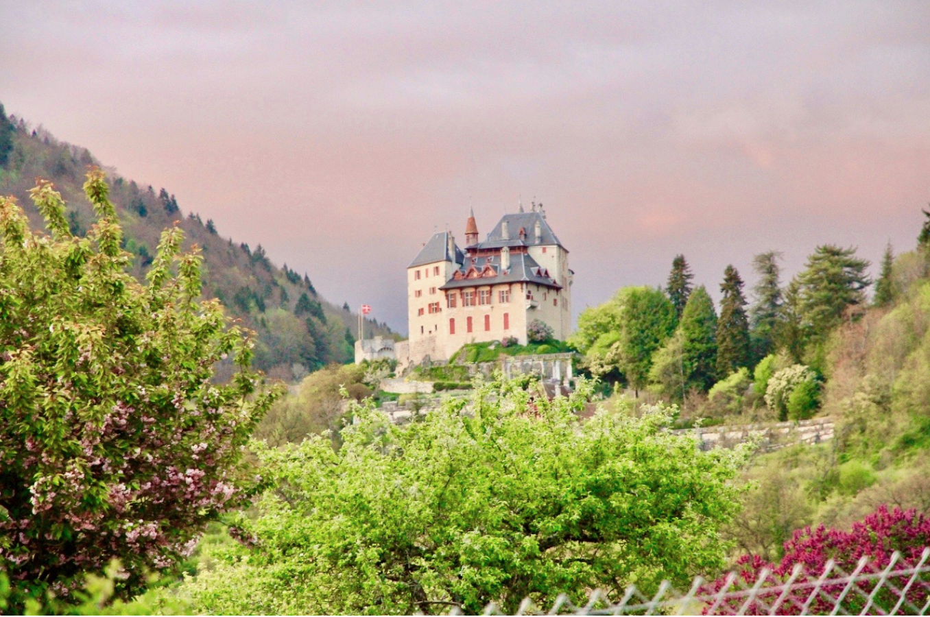 View of the Chateau Menthon St. Bernard from the deck.
