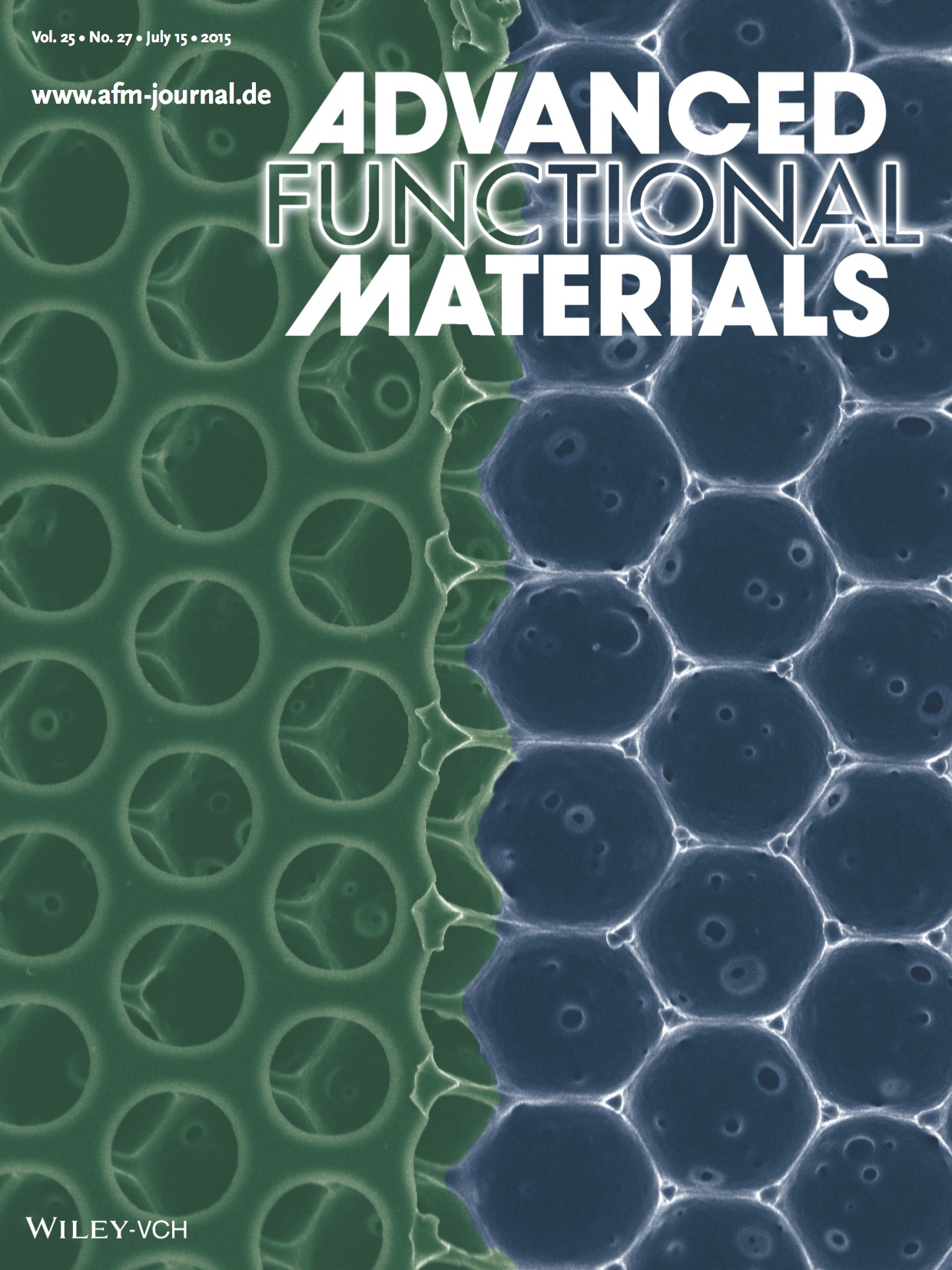 Kamei_et_al-2015-Advanced_Functional_Materials-2.jpg
