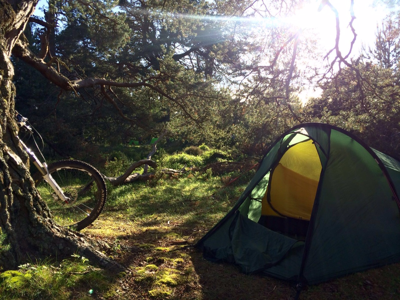 Dave's camping spot  while working with a Duke of Edinburgh group at Rothiemurchus