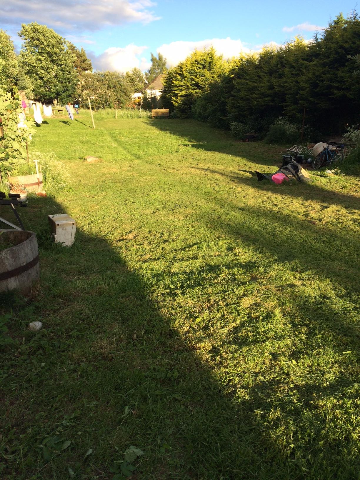 Robn's nest shared garden for all to enjoy