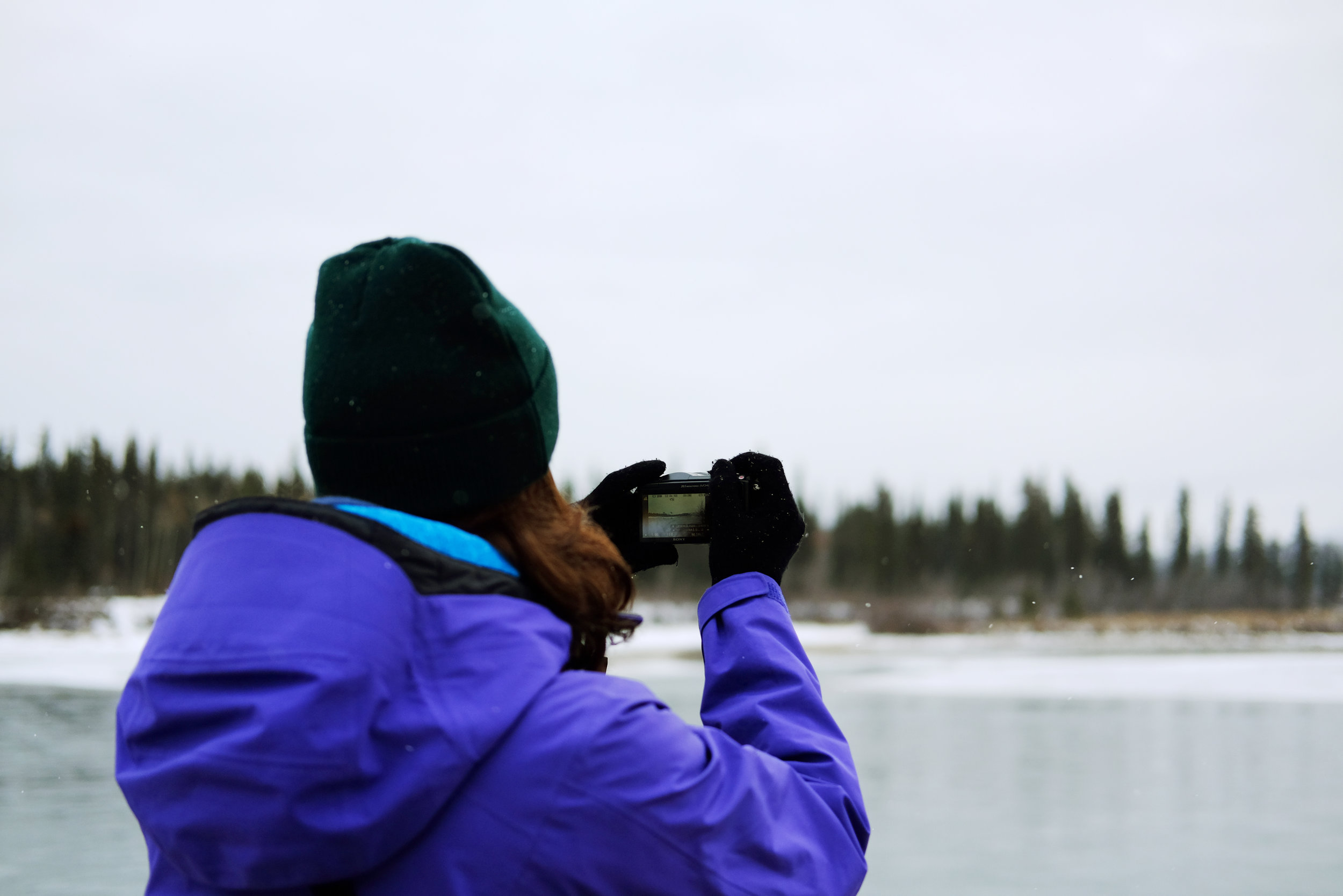 On our one day off, we decided to take a quick walk around town, making it down to the Yukon River.