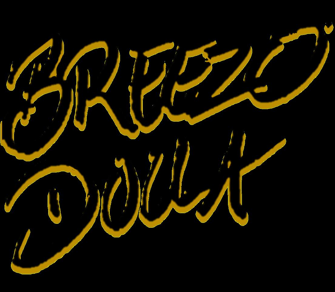 Breezo Dolla Final Logo - Transparent.png