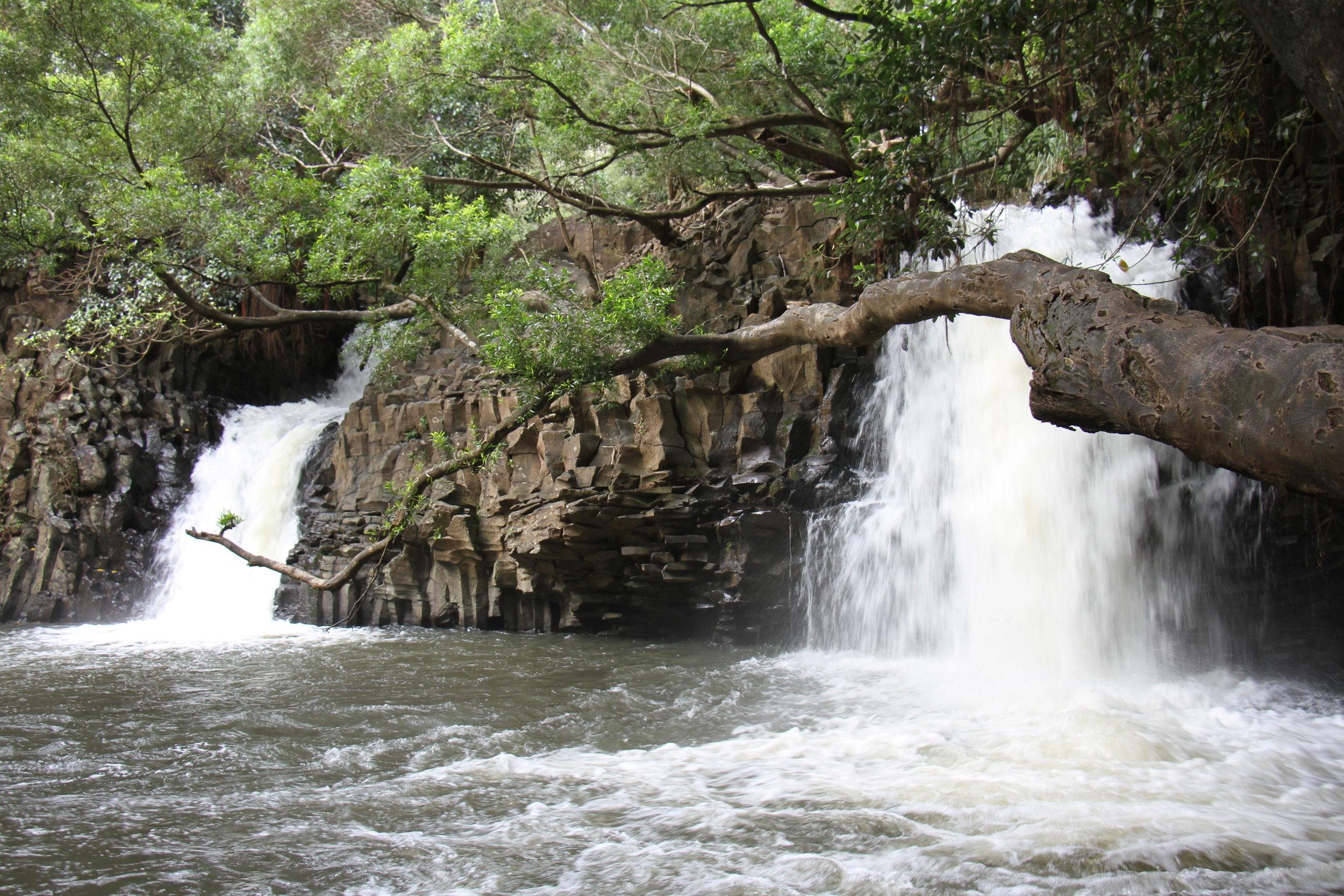 Road to Hana- Twin Falls