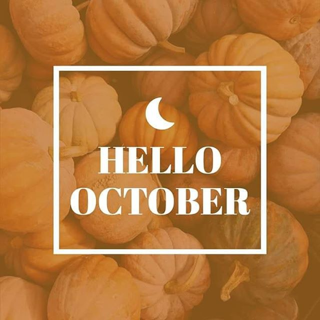 ��Hello October��Check the link in my bio to see this falls locations for future sessions this month!!