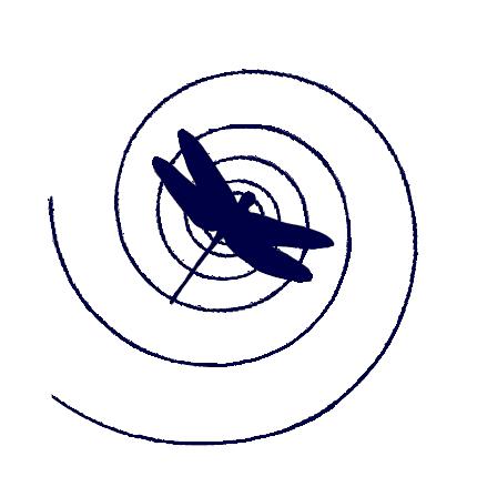 SmDragonflywSpiral.png